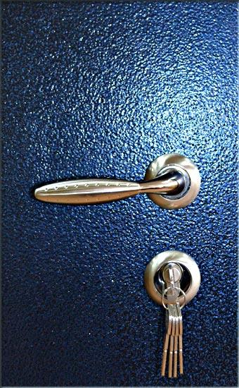 стальные входные двери синие порошковое